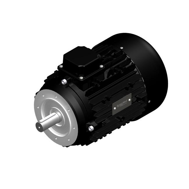 SM 30kW; 3000 rpm; IEC112 B14