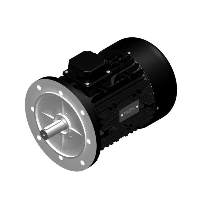 SM 30kW; 3000 rpm; IEC112 B5